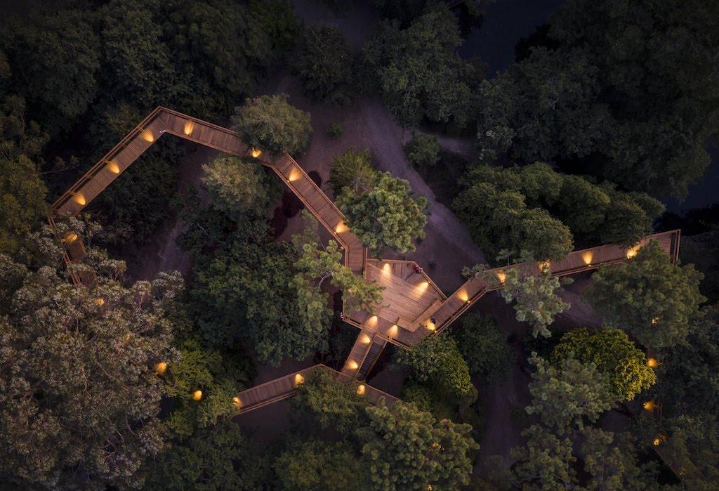 Treetop Walk de Serralves | Fotografia © FG+SG