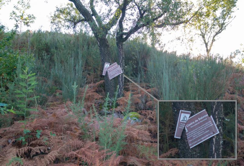 """""""Castro"""" de Sabroso, Guimarães: pormenor do estado atual da placa identificativa de classificação do local como Monumento Nacional (cortesia Luís Coutinho)"""