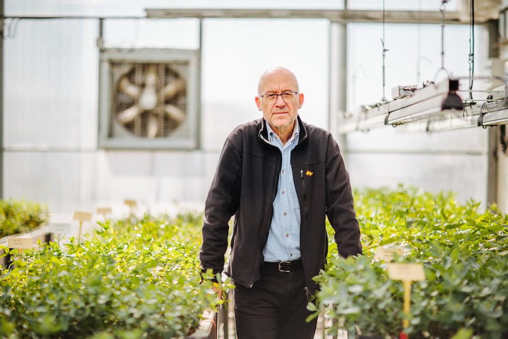 Nuno Borralho lidera o programa de melhoramento genético do eucalipto desenvolvido no Instituto RAIZ.