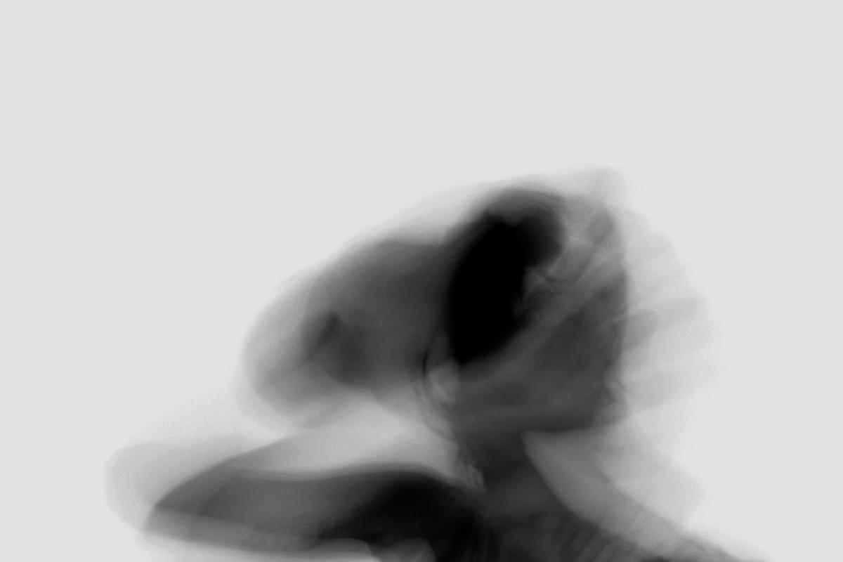Darktraces de Joana Castro ©D.R.